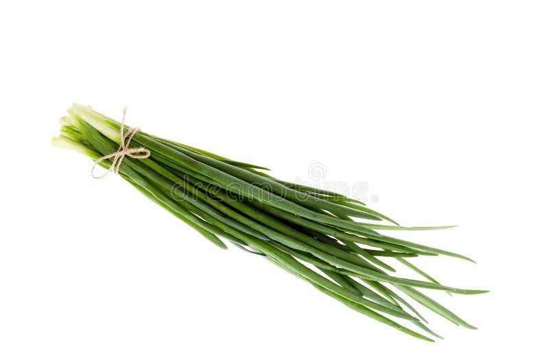 Пук свежих зеленых луков изолированных на белой предпосылке стоковые изображения
