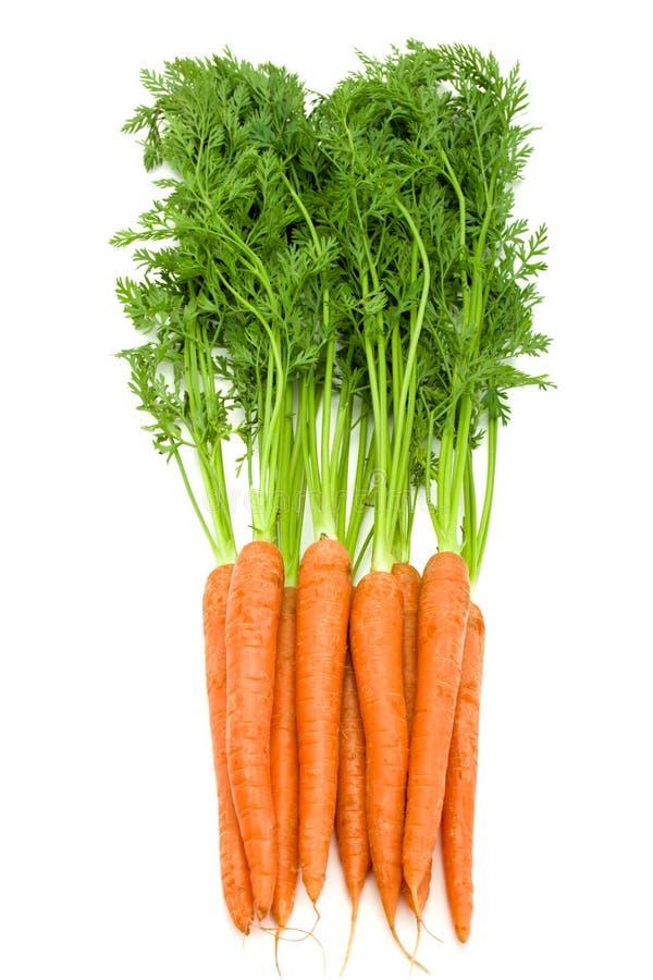 Пук свежих сырцовых морковей при зеленые изолированные верхние части стоковая фотография rf