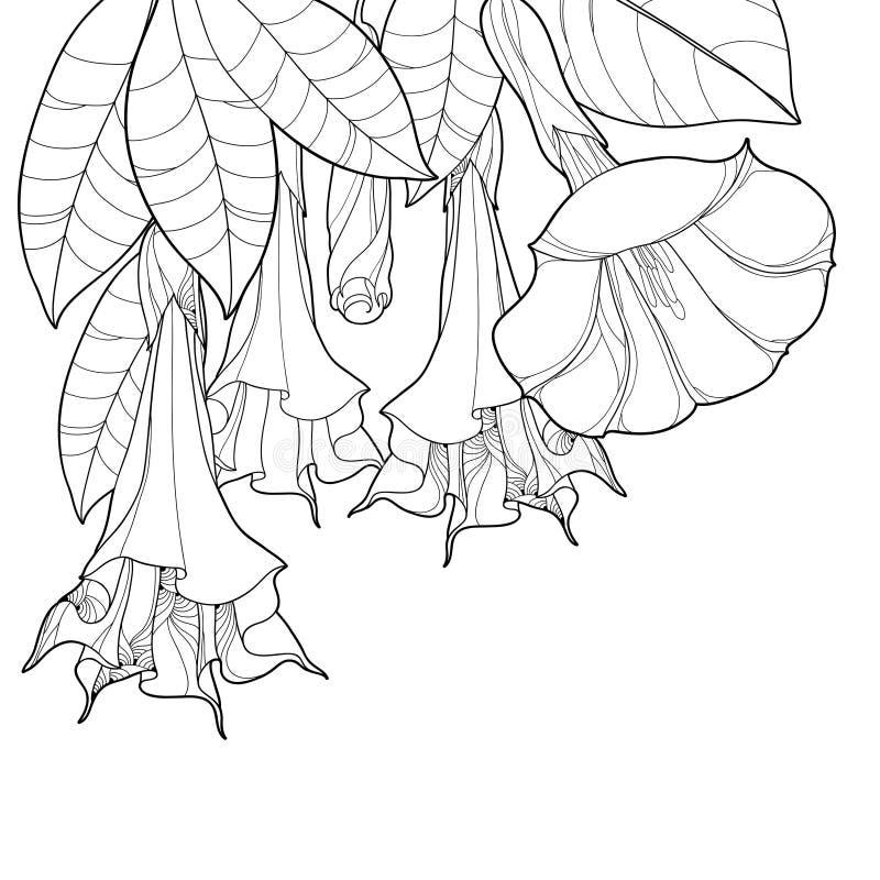 Пук угла вектора с ангелами раззванивает цветок плана, бутон и богато украшенные листья в черноте изолированные на белой предпосы иллюстрация штока