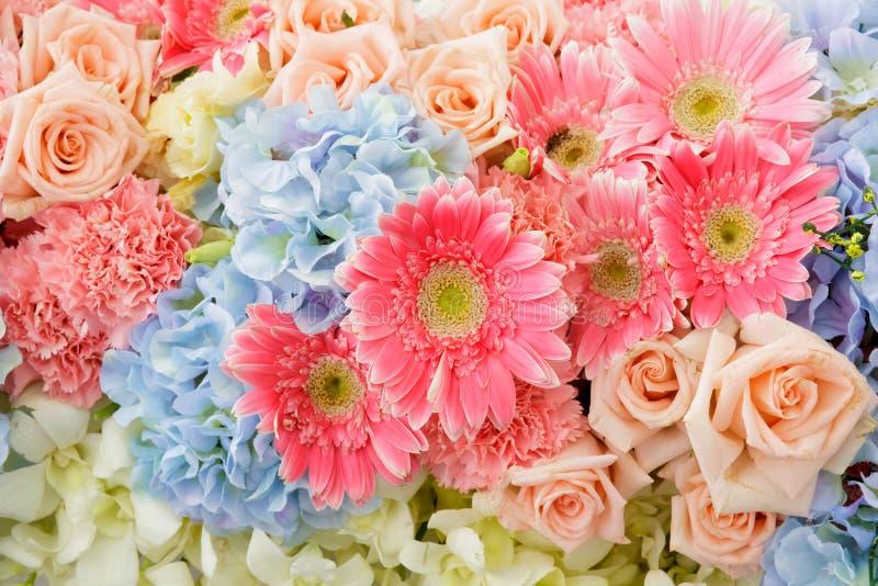 Пук цветков стоковое фото