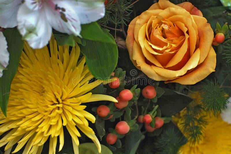 Пук цветков стоковые изображения