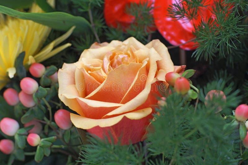 Пук цветков стоковое фото rf
