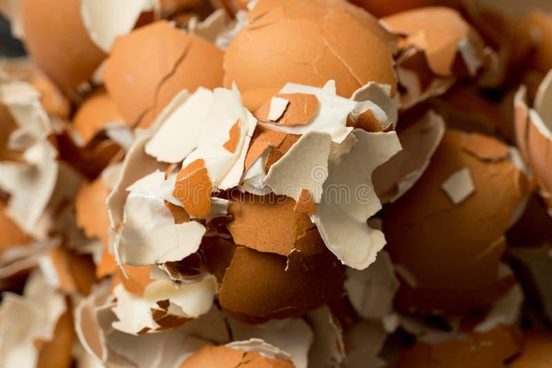 Пук eggshell стоковые изображения