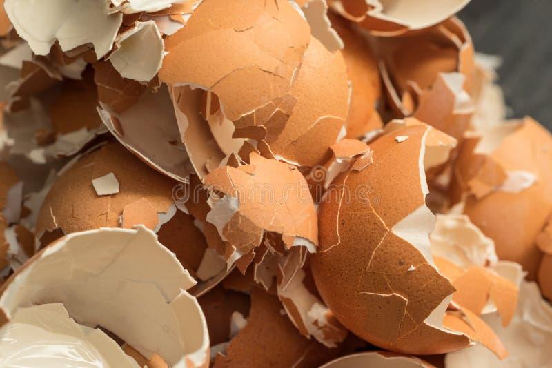 Пук eggshell стоковые фотографии rf