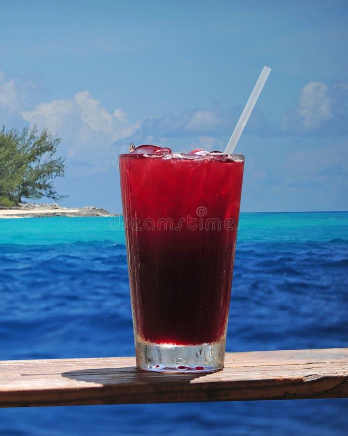 Пунш рома или fruity питье в тропическом рае стоковое фото