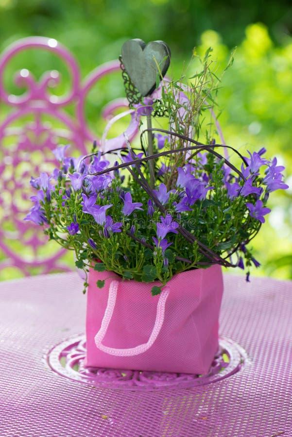 Пурпурный цветок колокола с сердцем стоковое фото rf