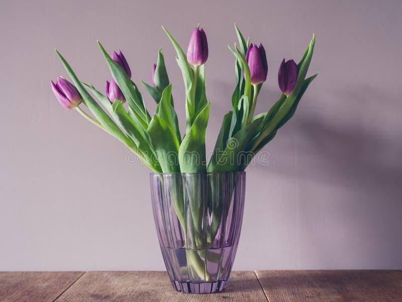 пурпуровая ваза тюльпанов стоковая фотография rf