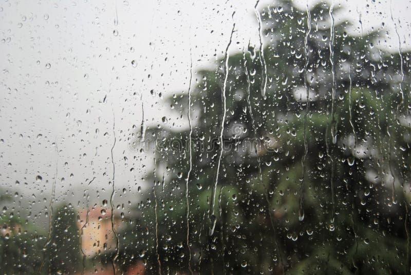 пурпуровое окно дождя стоковое изображение rf