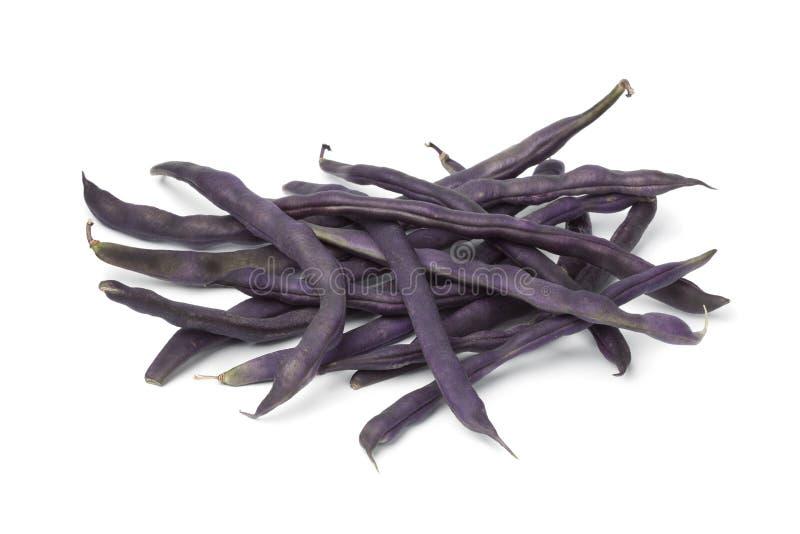 Пурпуровые свежие фасоли стоковые изображения rf