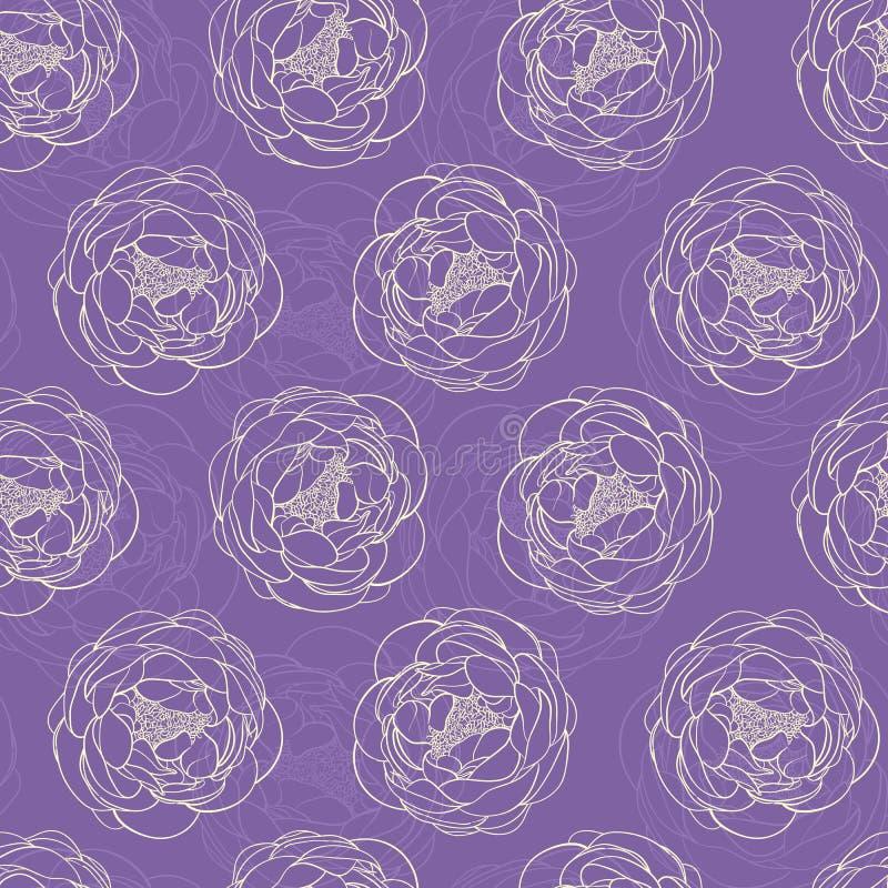 пурпуровые peonies иллюстрация штока