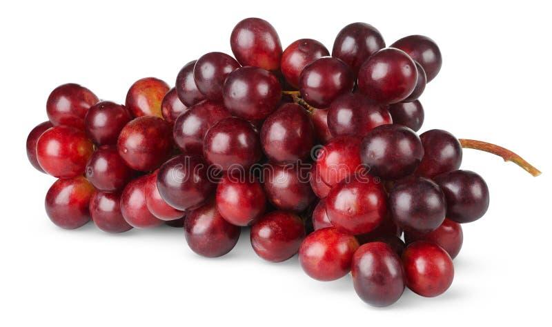 пурпур виноградины стоковые изображения rf