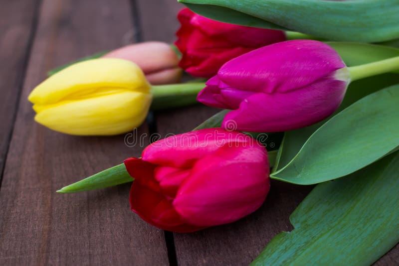 Пурпур покрасил цветки тюльпана на деревянной предпосылке стоковые изображения rf
