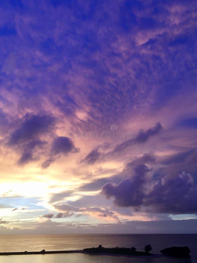 Пурпур цвета стоковое фото