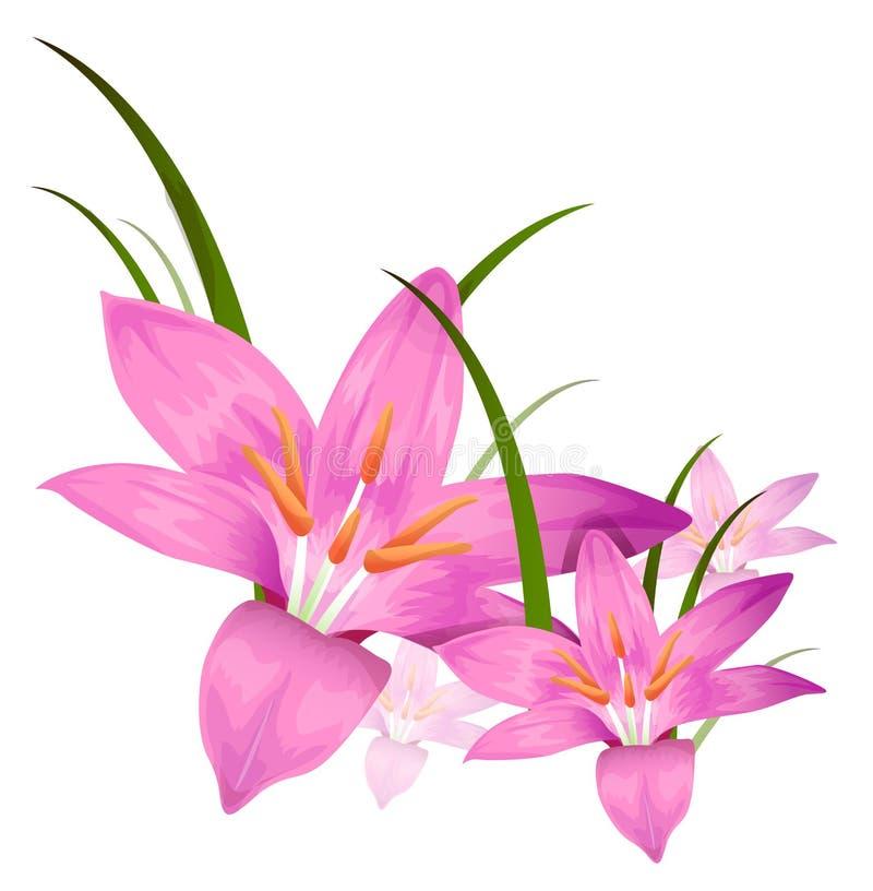 пурпур цветка иллюстрация штока