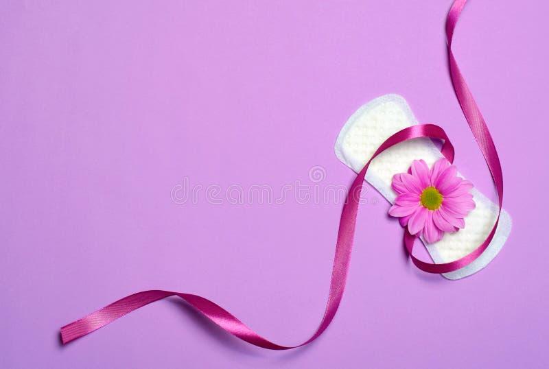 Пусковая площадка женщины санитарная и цветок маргаритки Gerbera, женственная концепция гигиены стоковые фото