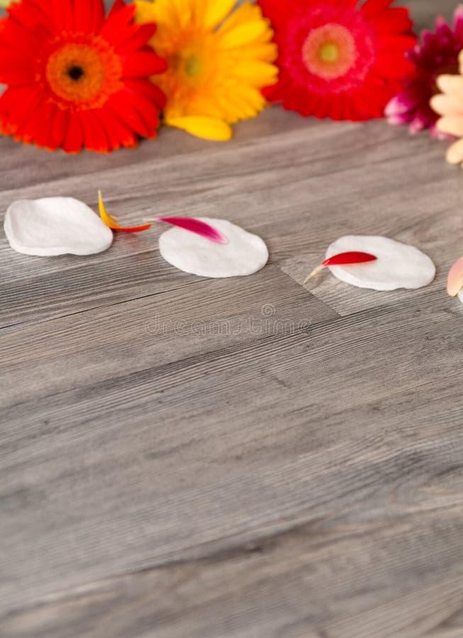 Пусковые площадки хлопка свежего цветка белые и полотенце, пустой космос, мягкий фокус, забота ванной комнаты ежедневная стоковые изображения rf