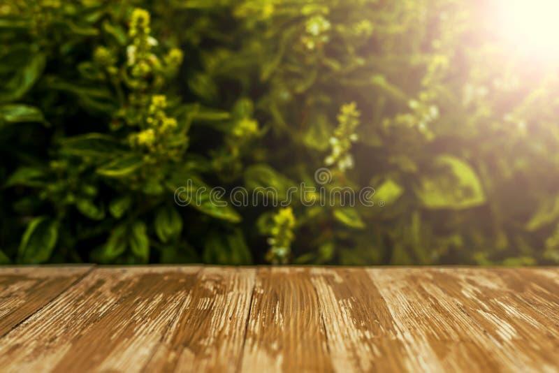 Пустая деревенская деревянная столешница на запачканной предпосылке базилика в g стоковые фотографии rf