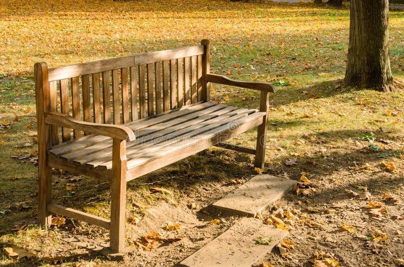 Пустая деревянная скамья в общественном парке в осени стоковое изображение rf