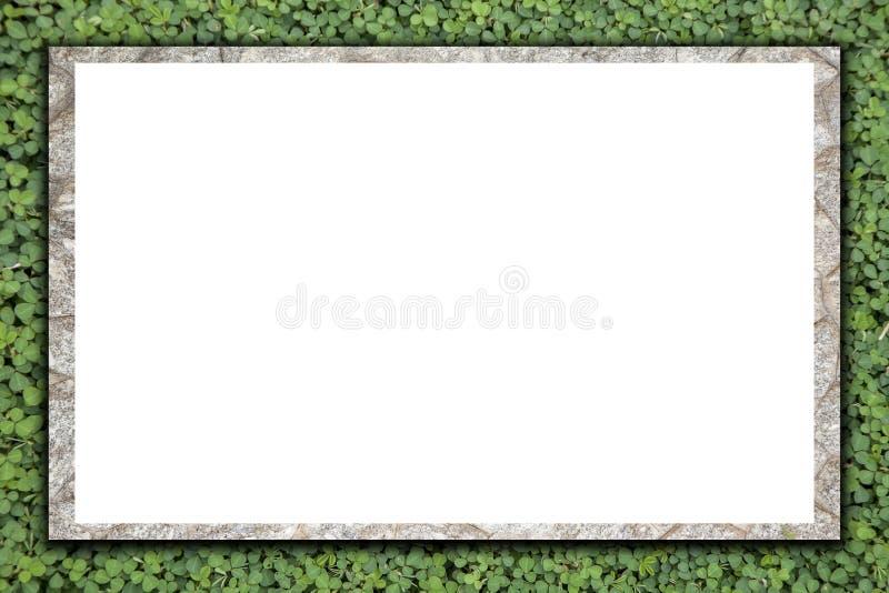 Пустая каменная афиша на текстуре зеленой травы, для предпосылки стоковое изображение rf