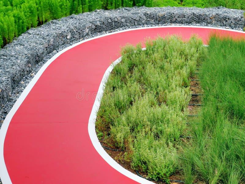 Пустая красная одиночная дорога майны для велосипеда через заводы и кусты в парке стоковая фотография rf