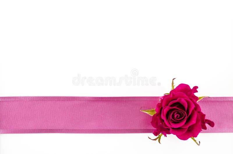 Пустая предпосылка открытки с розовым цветком и розовой лентой стоковые фотографии rf