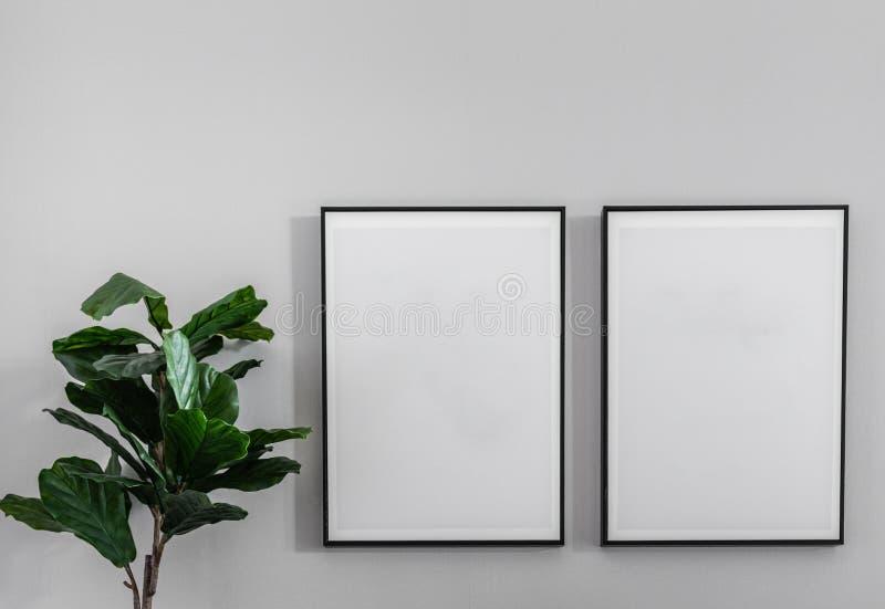 Пустая рамка nstalling на стене с искусственными заводами/coz стоковое изображение
