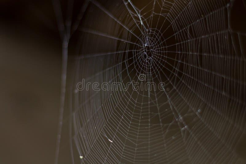 Пустая реальная сеть на темной предпосылке страх стоковые фотографии rf