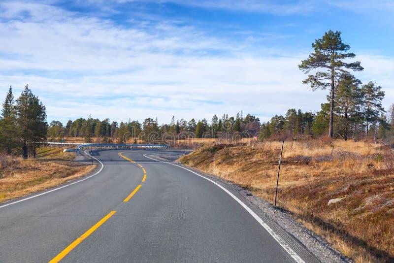 Пустая сельская норвежская дорога в осени стоковые изображения rf