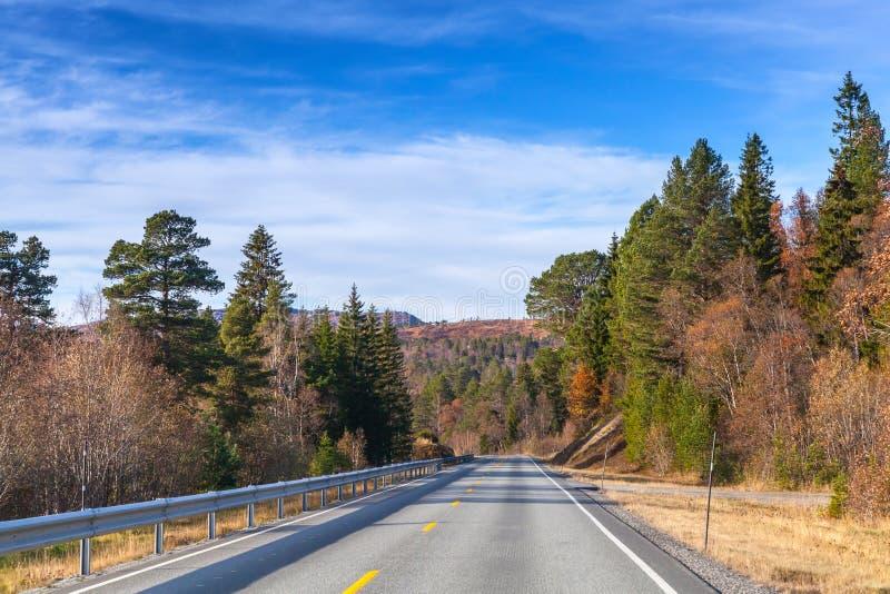 Пустая сельская норвежская перспектива дороги стоковые изображения rf