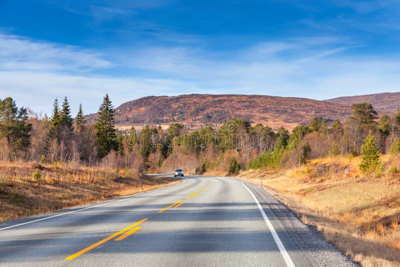Пустая сельская норвежская предпосылка дороги стоковая фотография rf