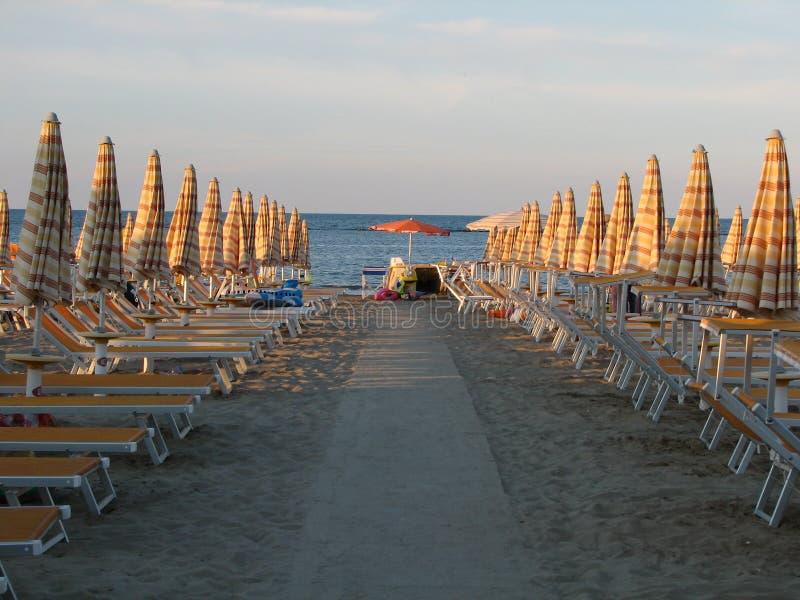 Пустое Deckchairs и парасоли на пляже стоковое фото rf