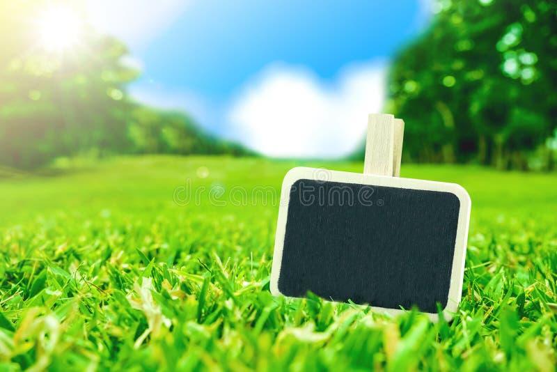 Пустой зажим классн классного на fielda и солнечном свете зеленой травы с bl стоковые изображения rf