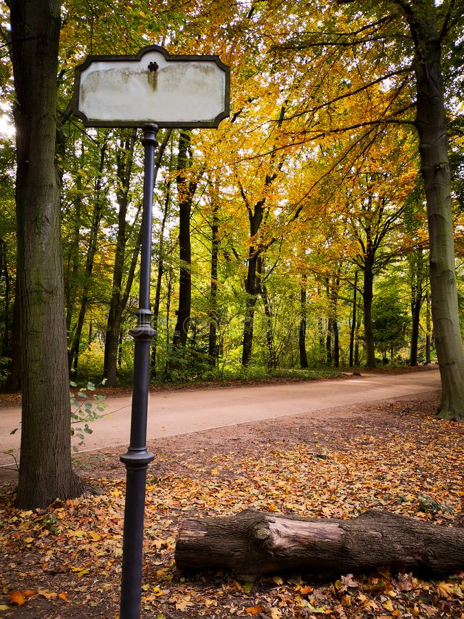 Пустой знак пути около узкого пути в парке осени стоковая фотография rf