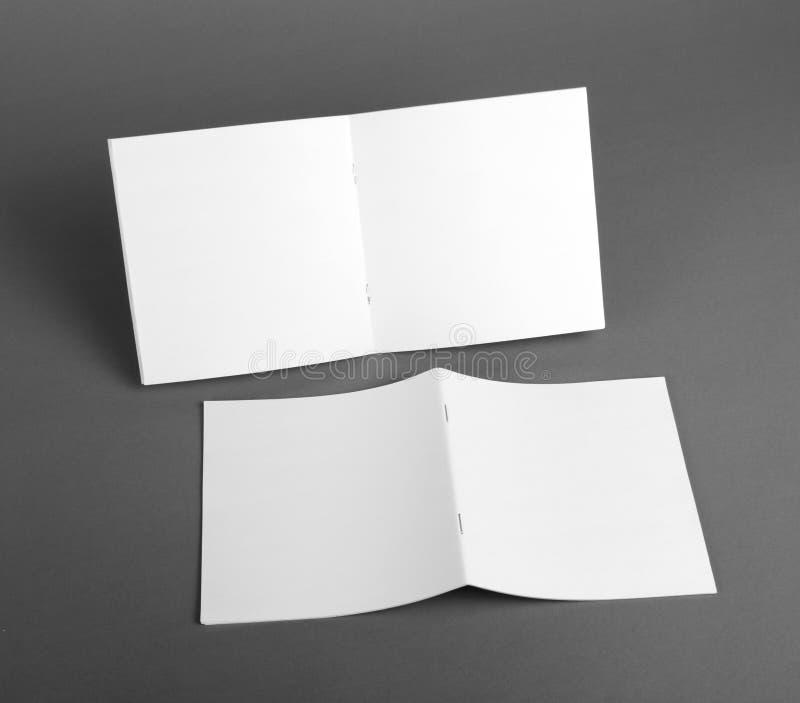Пустой каталог, брошюра, кассеты, насмешка книги вверх стоковое изображение rf