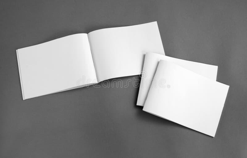 Пустой каталог, брошюра, кассеты, насмешка книги вверх стоковая фотография rf