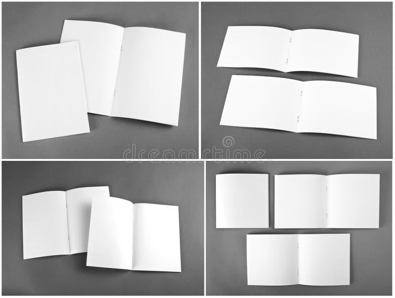 Пустой каталог, брошюра, кассеты, насмешка книги вверх стоковые фотографии rf