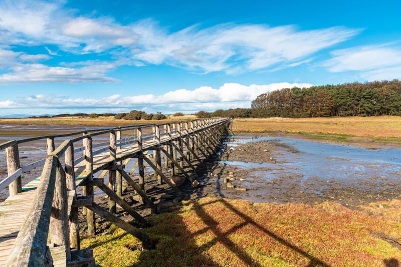 Пустой мост Pedestrain над заводью во время отлива и голубым небом стоковые изображения rf