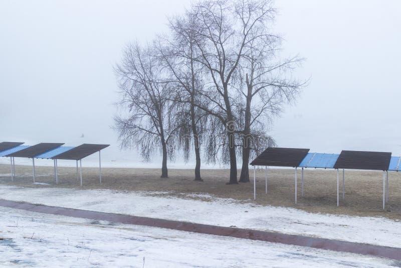 Пустой пляж весной на банках реки, деревьев и укрытия от солнца туманнейше стоковые изображения rf