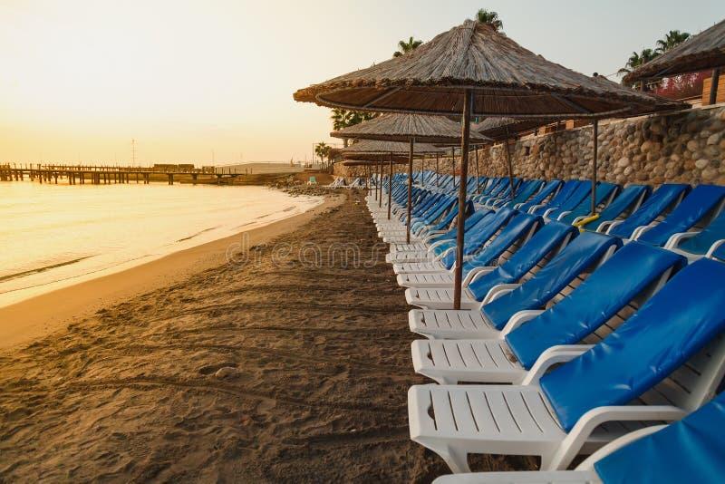 Пустой пляж моря с плоской строкой шезлонгов и зонтиков на восходе солнца стоковые фотографии rf