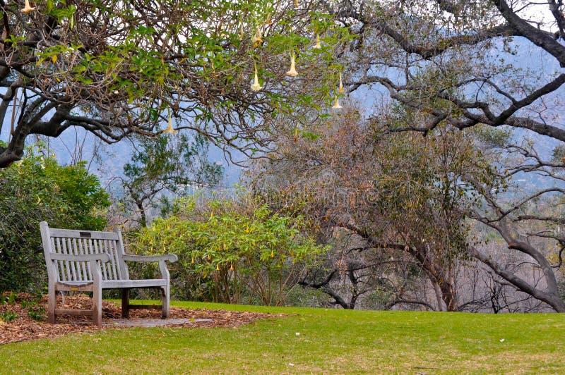 Пустой стул стоковое фото rf