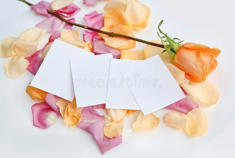 Пустой Notepaper с розовыми цветком и лепестками на белой предпосылке стоковая фотография rf