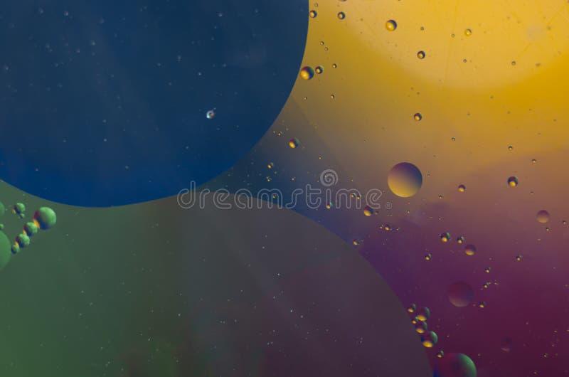Пустословия Lida стоковое изображение