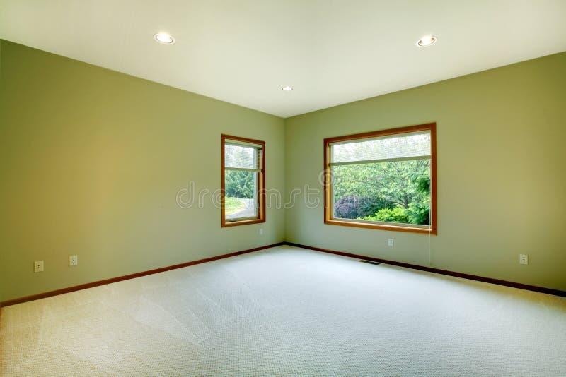 пустые зеленые большие стены комнаты стоковая фотография