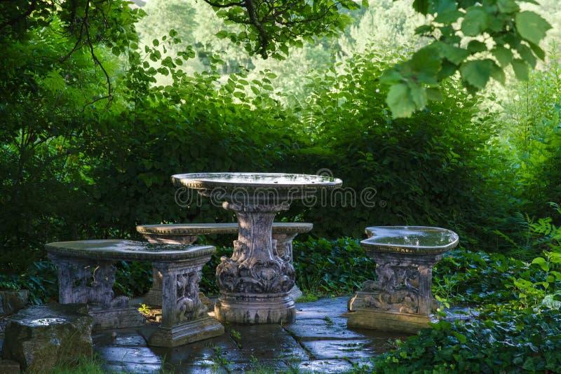 Пустые каменные таблица и стенды отражают зеленые деревья и небо в бассейнах воды собранных после дождя; стоковое изображение