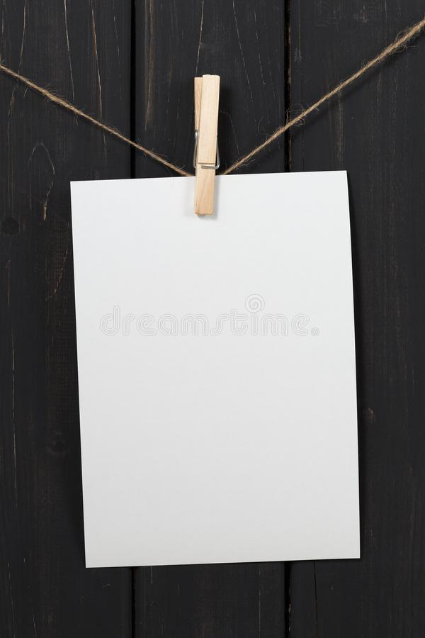 Пустые карточки белой бумаги вися на зажимках для белья стоковое фото rf