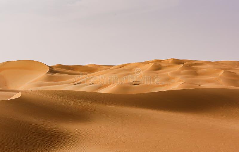 Пустые кустарные пустоши в Ливе, Абу-Даби, Объединенные Арабские Эмираты стоковые фотографии rf