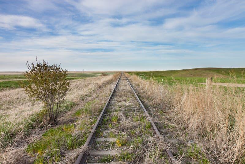 Пустые перерастанные железнодорожные пути в канадской прерии стоковая фотография rf