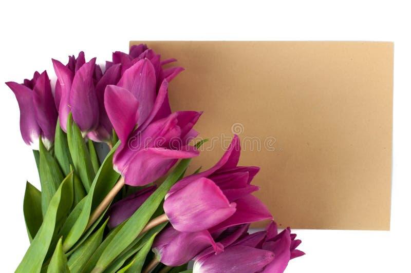 пустые поздравительная открытка и конверт с фиолетовыми тюльпанами над белизной изолировали предпосылку стоковое изображение rf