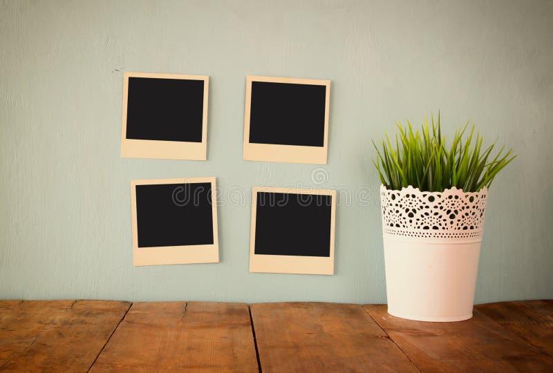 Пустые пустые немедленные фото висят над деревянной текстурированной предпосылкой рядом с цветочным горшком стоковое фото rf