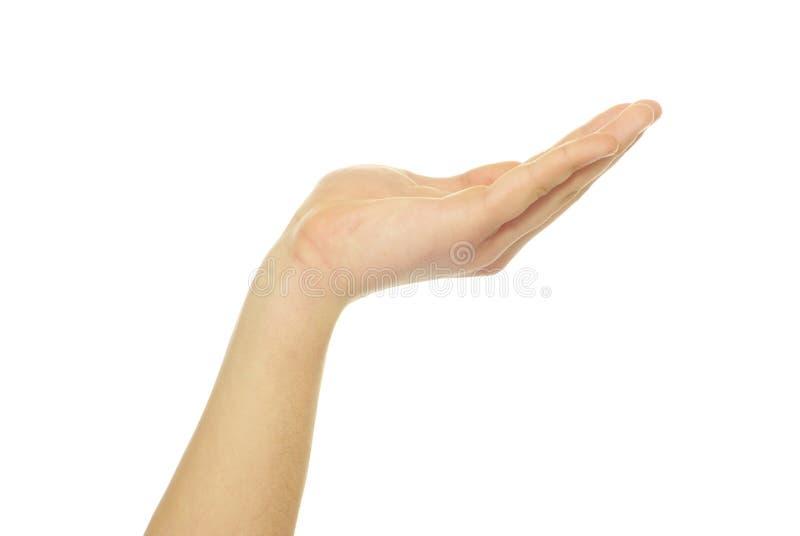 Download Пустые руки стоковое фото. изображение насчитывающей внимательность - 33730260